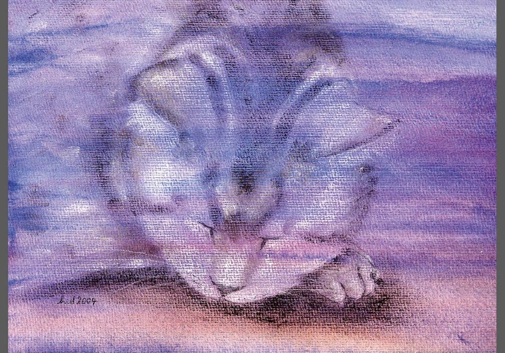 Linus-Violett