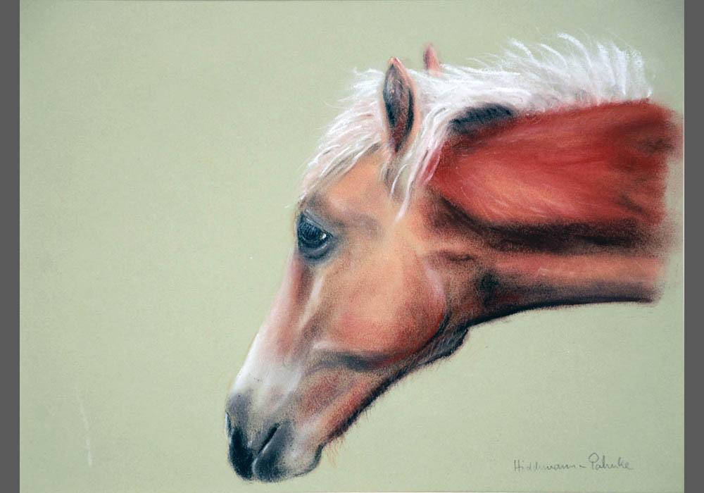 Pferd-pastell